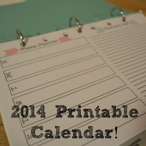 2014 Free Printable Organizer!  | Craft Dictator